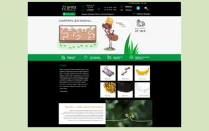 Разработка интернет магазина по продаже муравьев antsfromua.com