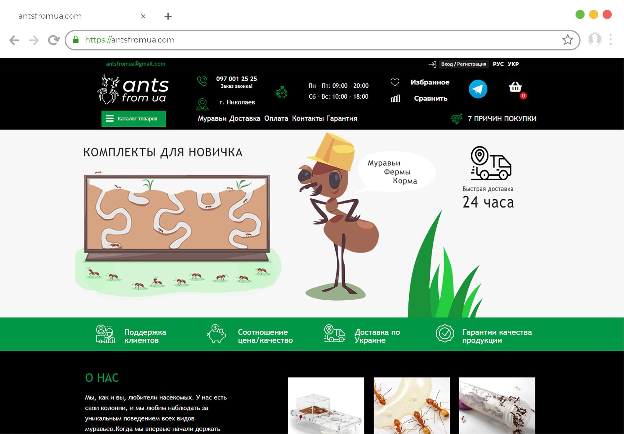 Интернет магазин по продаже муравьев