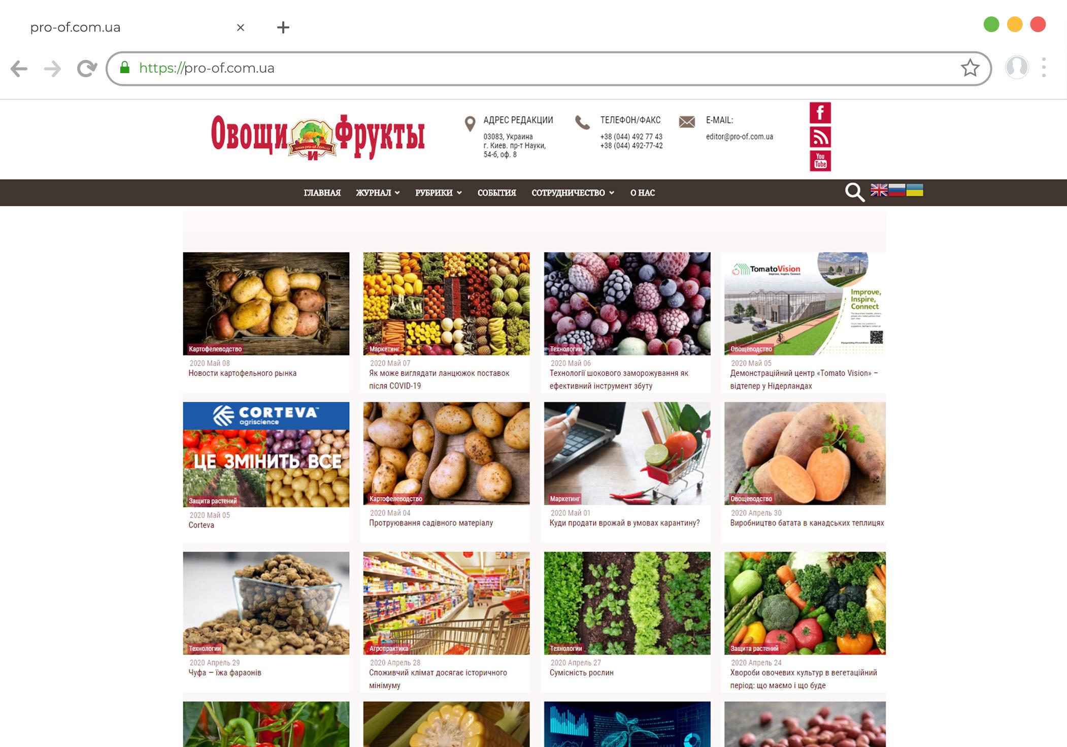 Разработка новостного сайта на Wordpress для журнала Овощи и Фрукты